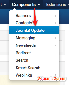 Joomla Update options