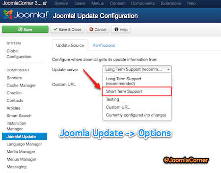 Joomla Update Manager Options